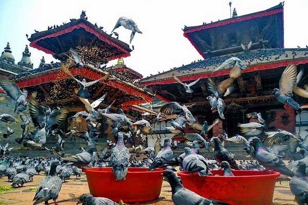 Nepal-Temples