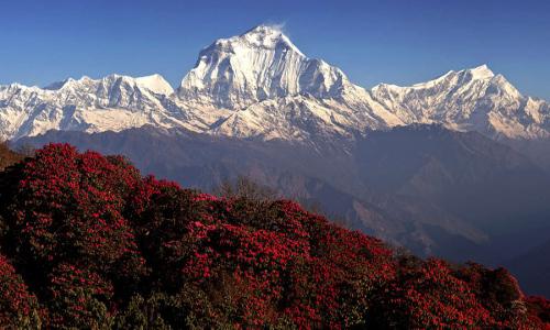 best-hikes-in-nepal8