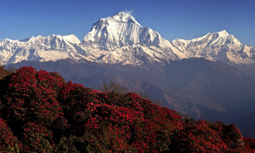 best-hikes-in-nepal8