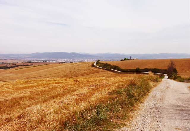 Camino-de-Santiago-MountainIQ-Best-Hikes-In-Europe