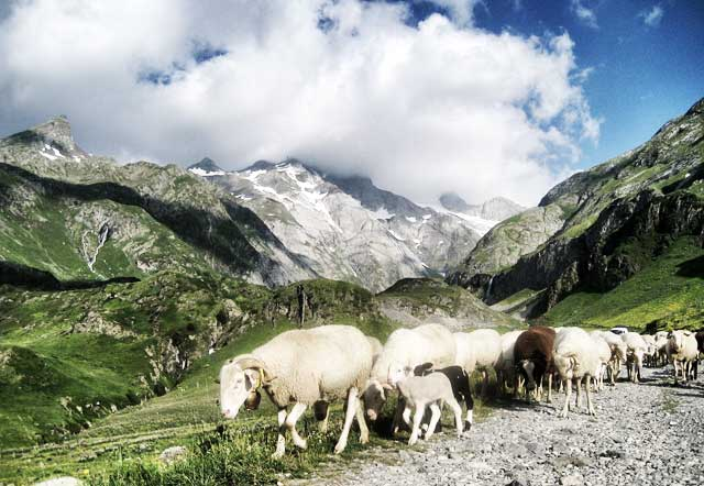 GR10-MountainIQ-Best-Hikes-in-Europe