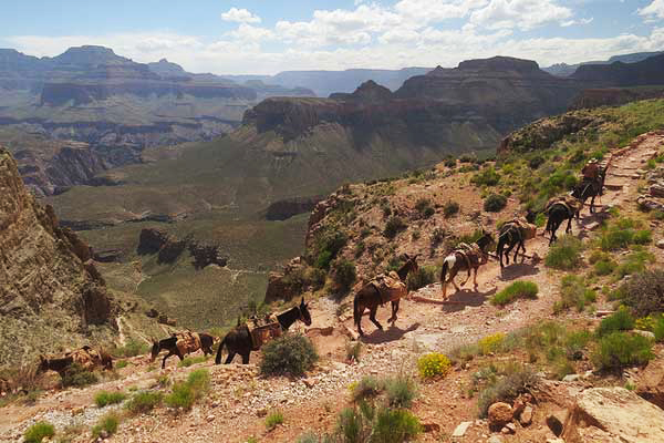 3-South-Kaibab-Trail