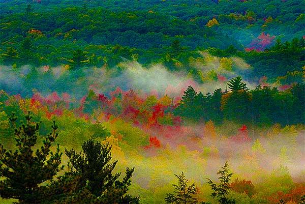 Appalachian-Trail-near-NYC