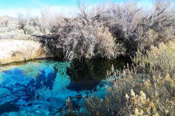 Crystal-Springs-Boardwalk-in-Ash-Meadows-Hiking-near-Las-Vegas