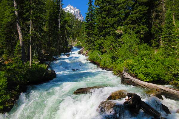 Hidden-Falls-Trail-Grand-Teton-Hikes