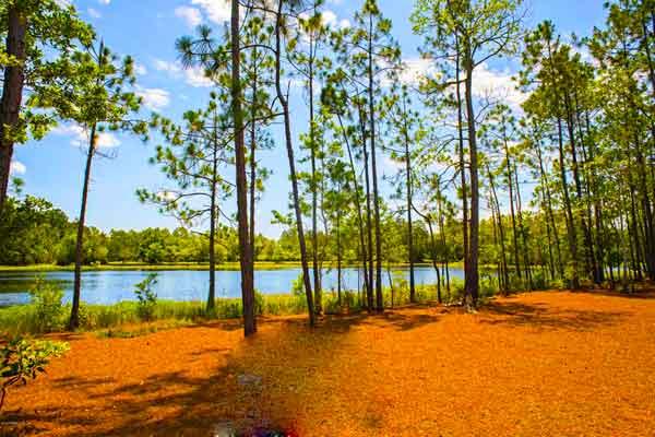 Prairie-Lakes-Loop-Florida