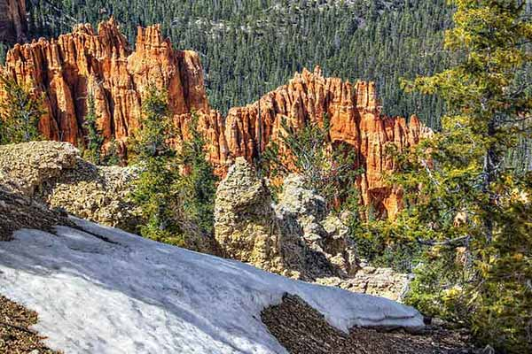 Bristlecone-Loop-Trail-Bryce-Canyon