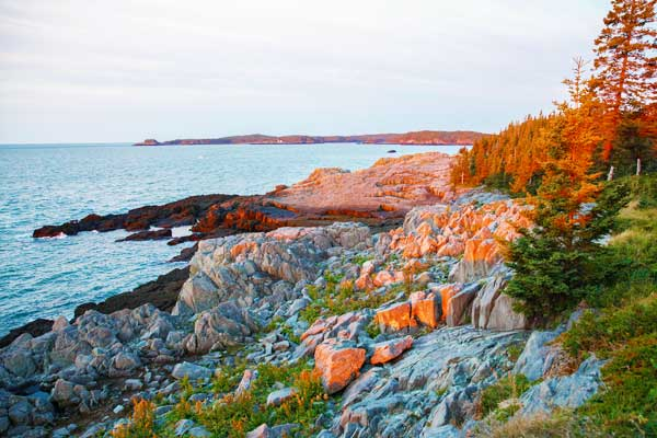 Cutler-Coast-trail-2