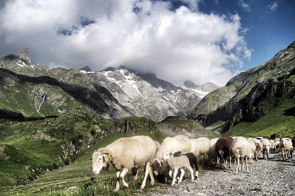 GR10 Pyrenees