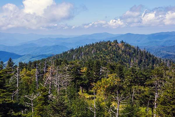 Andrews Bald Smoky Mountain