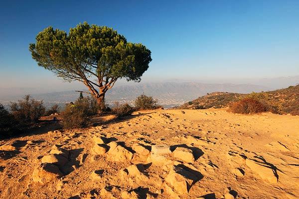 Burban Peak LA