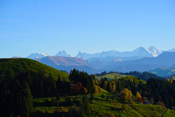 Bernese Alps Swiss