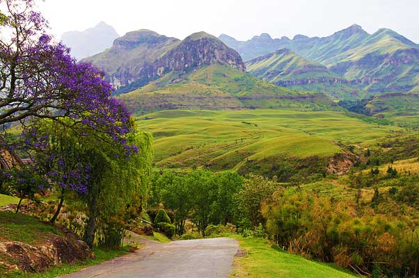Cathedral-Peak-Drakensberg