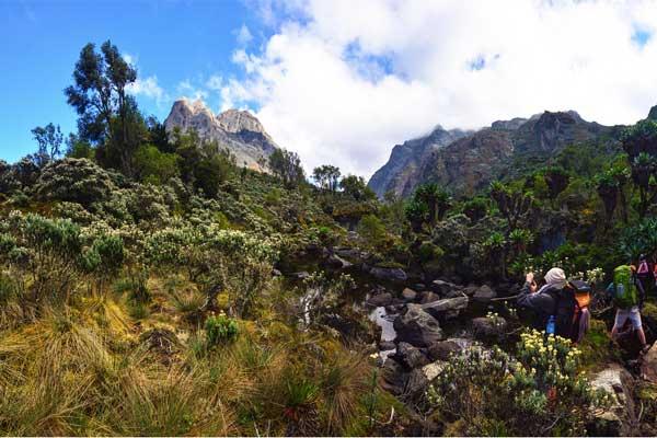 Mount-Baker-Rwenzori