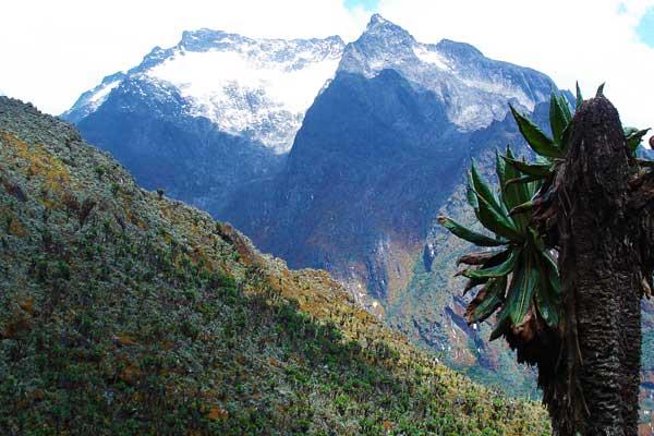 Mount-Speke-Rwenzori