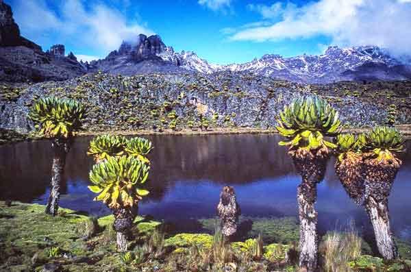 Point-Lenana-Sirimon-Route-Mount-Kenya