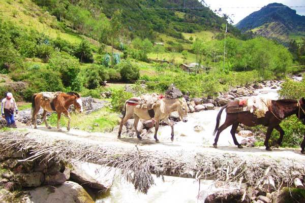 Salkantay-Trek-Machu-Picchu