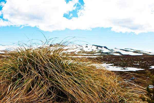Mount-Townsend-Australian-Alps