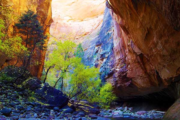 Narrows-Hike-Zion-in-USA