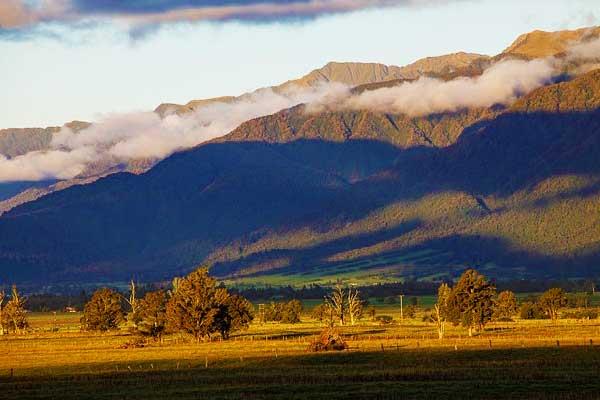 Southern-Alps-New-Zelaand-Plants-And-Wildlife