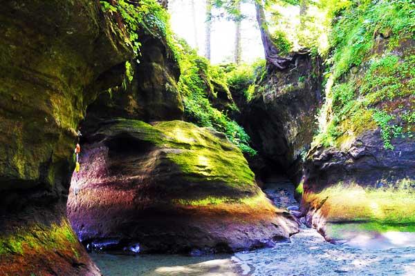 West-Coast-Trail-Canada-North-America