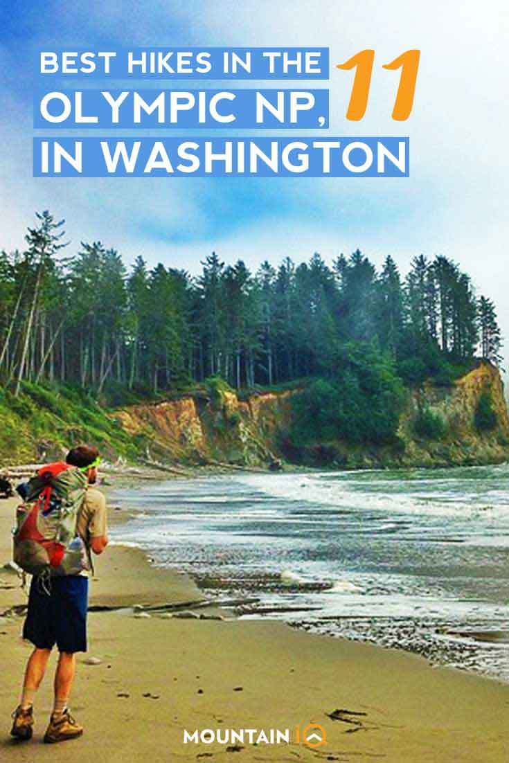Best-hikes-in-Olympic-National-Park-USA-Washington