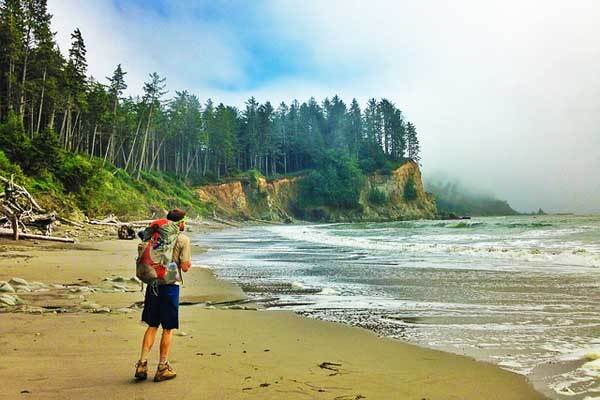 Best-hikes-in-Olympic-National-Park-Washington-USA