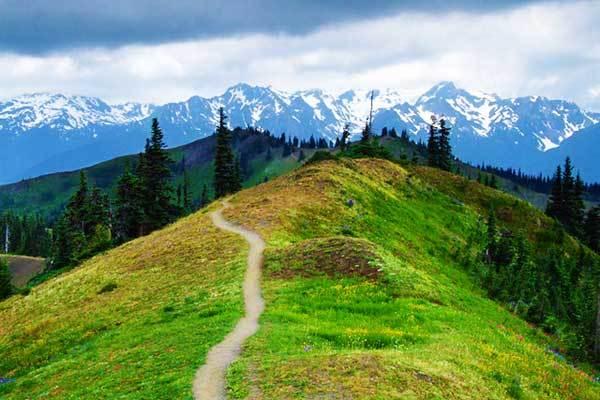 Klahhane-Ridge-Olympic-Park-Washington-USA