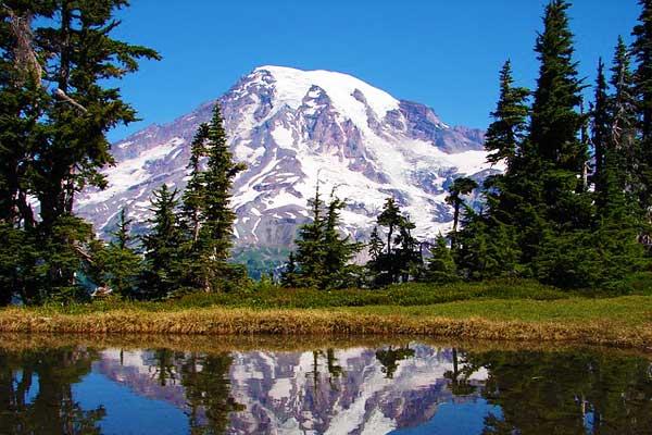 Mount-Rainier-Washington-North-America-Woods-image