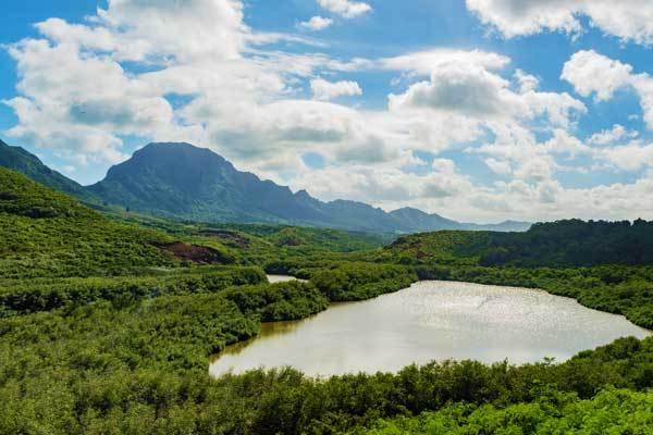 Nounou-Mountain-Trail-Kauai-Hawaii-USA