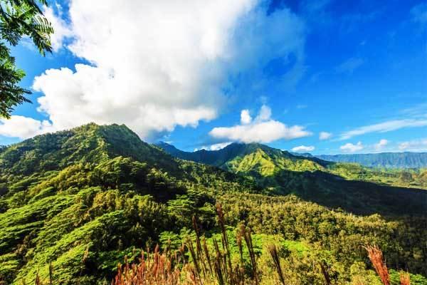 Okolehao-Trail-Kauai-Hawaii-USA