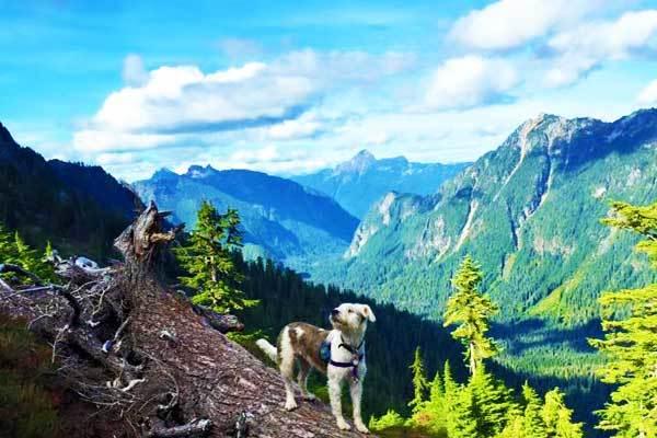 Gothic-Basin-Washington-USA