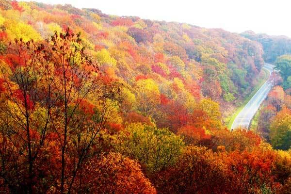 North-Carolina-hikes-appalachian-trail