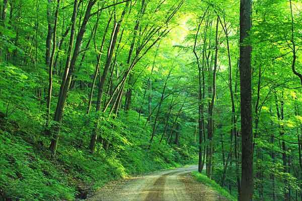 Pennsylvania-Hikes-appalachian-trail