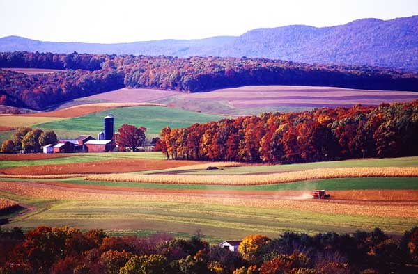 Appalachian-Trail-PA-Pennsylvania-Fields