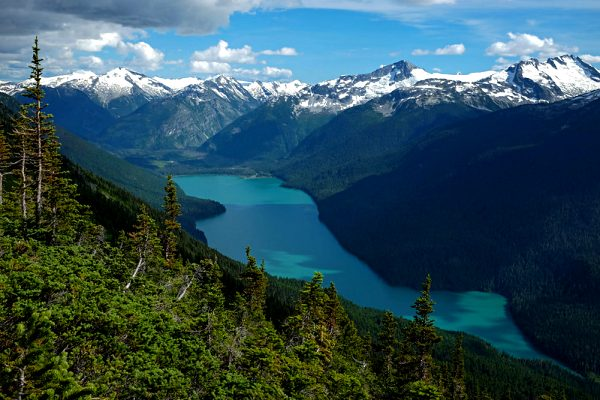 whistler-hikes-high-note-trail