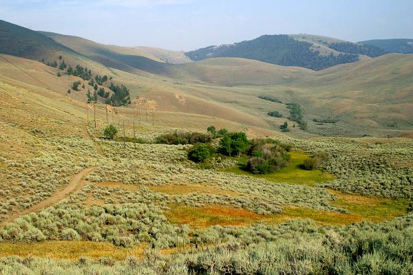 continental-divide-trail-new-mexico
