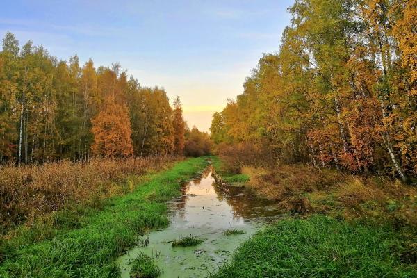 finland-Pornaistenniemi-hike