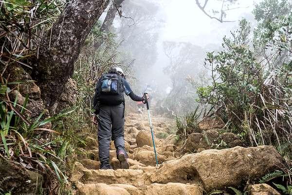 stairs-trail-mt-kinabalu