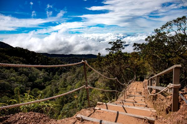 trail-mount-kinabalu