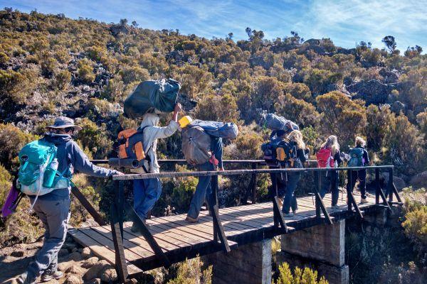 rongai-marangu-kilimanjaro