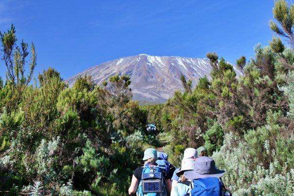 rongai-simba-camp-kilimanjaro
